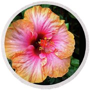 Dew-kissed Hibiscus Round Beach Towel by Sue Melvin