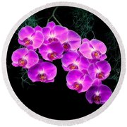 Dew-kissed Orchids Round Beach Towel