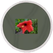 Dew On Flower Round Beach Towel