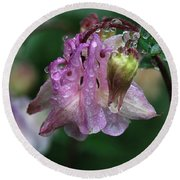 Round Beach Towel featuring the photograph Dewey Morning Columbine by Susan Capuano