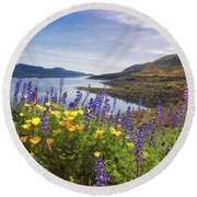 Round Beach Towel featuring the photograph Diamond Valley by Tassanee Angiolillo