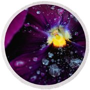 Round Beach Towel featuring the photograph Diamonds On A Pansy by Rachel Mirror