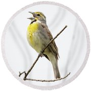 Round Beach Towel featuring the photograph Dickcissel  by Ricky L Jones