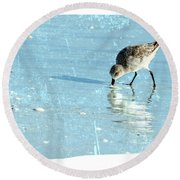 Dig In Round Beach Towel by Marvin Spates
