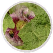 Dimensions Of Bees_flowers Round Beach Towel