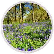 Dinefwr Bluebell Walk Round Beach Towel