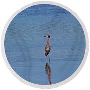 Round Beach Towel featuring the photograph Ding Darling's Number One IIi by Michiale Schneider
