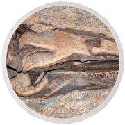 Dinosaur Skull And Teeth In Rock - Utah Round Beach Towel by Gary Whitton