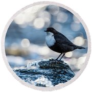 Round Beach Towel featuring the photograph Dipper On Ice by Torbjorn Swenelius