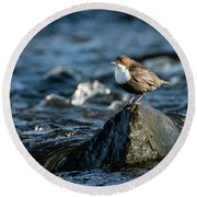 Dipper On The Rock Round Beach Towel