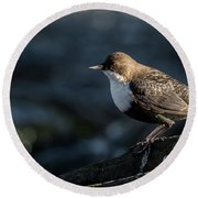 Round Beach Towel featuring the photograph Dipper by Torbjorn Swenelius
