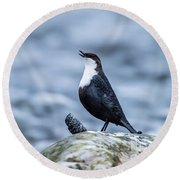 Round Beach Towel featuring the photograph Dipper's Call by Torbjorn Swenelius