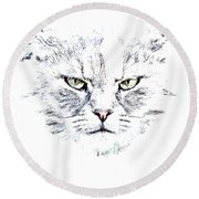 Disturbed Cat Round Beach Towel by Everet Regal