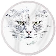 Disturbed Cat Round Beach Towel