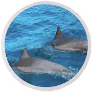 Dive On In Round Beach Towel