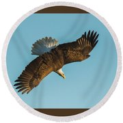 Diver Down Top Side Round Beach Towel by Jeff at JSJ Photography