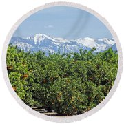 Round Beach Towel featuring the photograph Dm6850-e Orange Grove And The Sierra Nevada Ca by Ed Cooper Photography