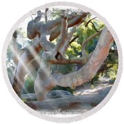 Do-00044 Mount Ettalong Round Beach Towel