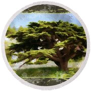 Do-00318 Cedar Barouk - Framed Round Beach Towel