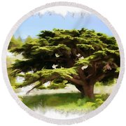 Do-00319 Cedar Tree Round Beach Towel