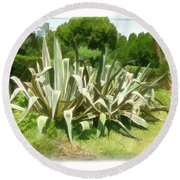 Round Beach Towel featuring the photograph Do-00335 Plant Bois Des Pins by Digital Oil