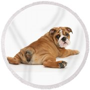 Does My Bum Look Big In This? Round Beach Towel