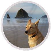Dog Portrait @ Cannon Beach Round Beach Towel
