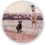Dog With Frisbee Round Beach Towel