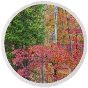 Dogwood And Cedar Round Beach Towel