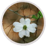 Dogwood Bloom Round Beach Towel by Cathy Harper