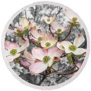 Round Beach Towel featuring the photograph Dogwood by Colleen Cornelius
