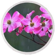 Dogwood Flowers In The Rain 0552 Round Beach Towel