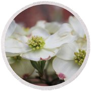 Dogwood Flowers Round Beach Towel by John S