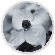 Round Beach Towel featuring the photograph Dogwood Rain Mono by Rachel Cohen