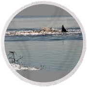Dolphin Tail In The Water Round Beach Towel