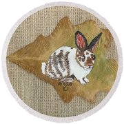 domestic Rabbit Round Beach Towel by Ralph Root