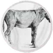 Donkey Round Beach Towel