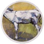 Donkey Stallion, Ronda Round Beach Towel by Mark Adlington