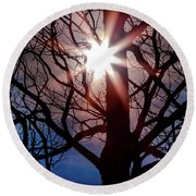 Round Beach Towel featuring the photograph Don't Lose Sight Of It All by Karen Wiles