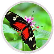 Doris Longwing Round Beach Towel
