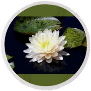 Dotty White Lotus And Lily Pads 0030 Dlw_h_2 Round Beach Towel