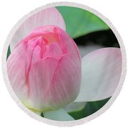 Dotus On The Lotus  Round Beach Towel