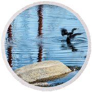 Double-crested Cormorant Round Beach Towel by Daniel Hebard