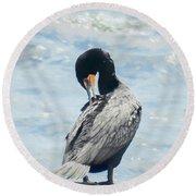 Double-crested Cormorant   Round Beach Towel