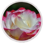Double Delight Rose 1 Round Beach Towel