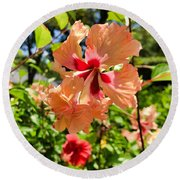 Round Beach Towel featuring the photograph Double Headed Hibiscus by Brian Eberly