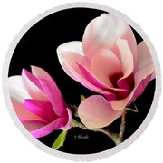Double Magnolia Blooms Round Beach Towel
