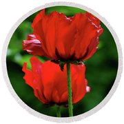 Double Red Poppies Round Beach Towel