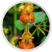 Double Shot Of Jewelweed Round Beach Towel by Barbara Bowen