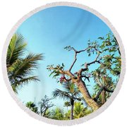 Tree And Blue Sky Round Beach Towel